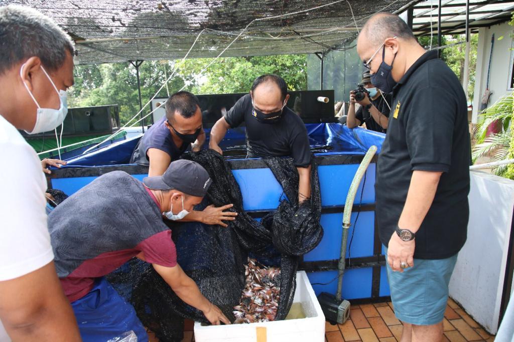 Wakil Kepala BP Batam Tebar Benih Ikan di Waduk Sei Ladi, untuk Jaga Ekosistem Waduk